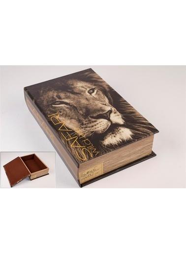 Mikasa Moor Aslan Kitap Şek Kutu 27X18Cm Renkli